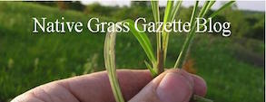 Information, news and announcements about grasslands and prescribed fire.