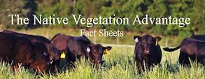 Factsheets documenting the advantage of native vegetation for soil, water and air quality, forage and biomass and wildlife.
