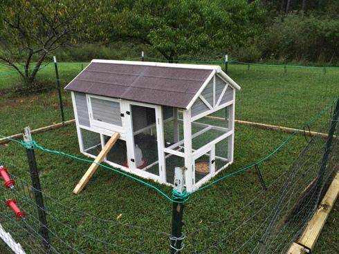 Puckett's modified chicken coop