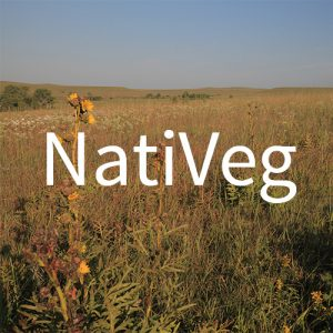 nativeg-icon