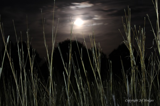 light-painted-bluestem-super-moon_redcued