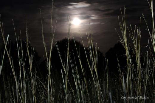 light-painted-bluestem-super-moon_redcued
