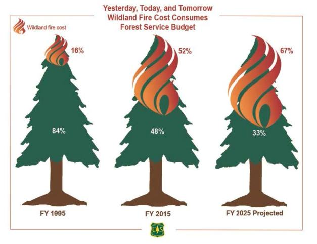 the-cost-of-wildland-fire_reduced